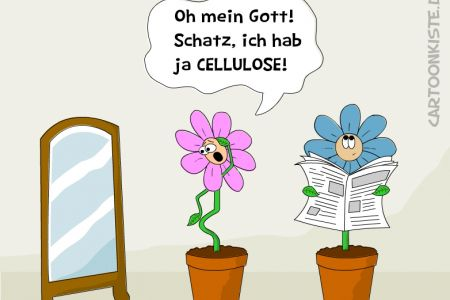 cellulose.jpg