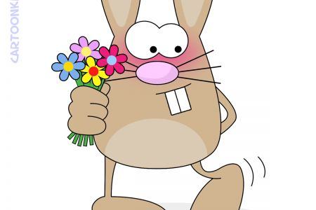 bunny-shy.jpg