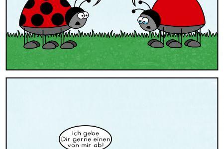 marienkaefer_cartoon.jpg