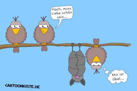 batbird.jpg