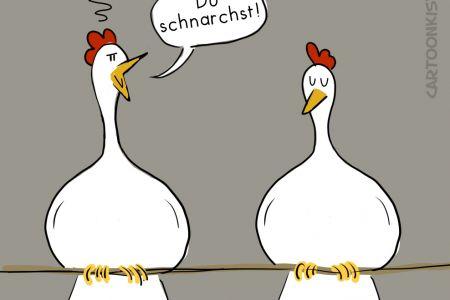chicken-sleep.jpg